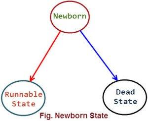 Newborn State