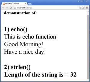 echo_strlen_func_output