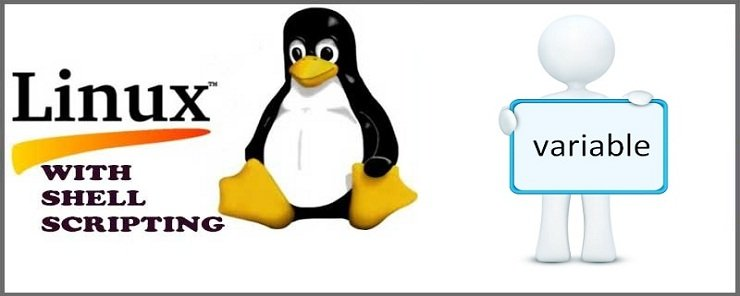 variables in linux shell scripting