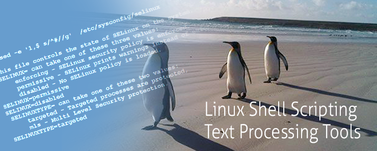 Linux Shell Scripting (16)