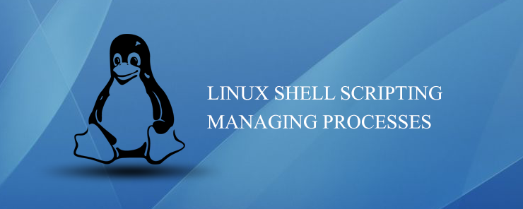 Linux Shell Scripting Managing processes