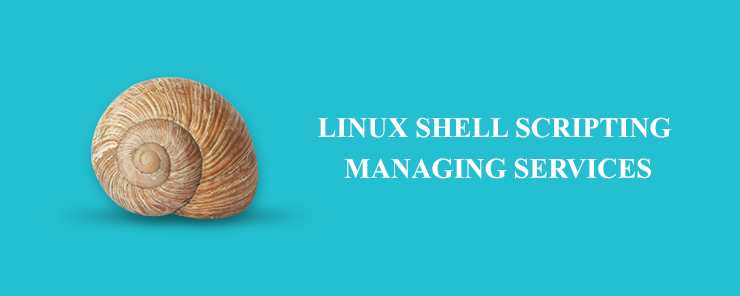 Linux Shell Scripting Managing Services