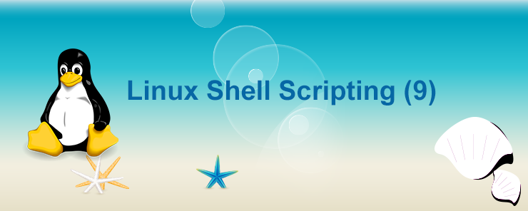 Linux Shell Scripting (9)