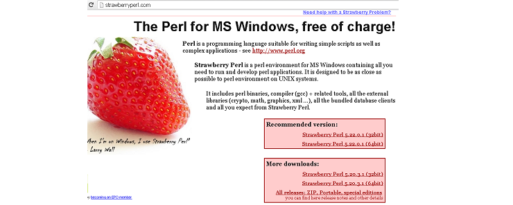 Installing Perl on Windows