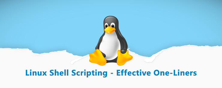 Linux Shell Scripting (27) - Effective One-Liners (2)