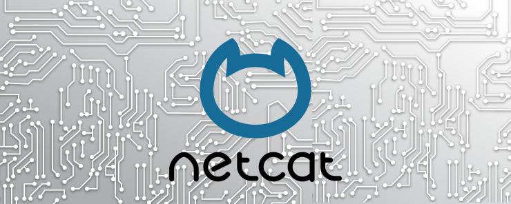 Linux Shell Scripting (30) - Netcat