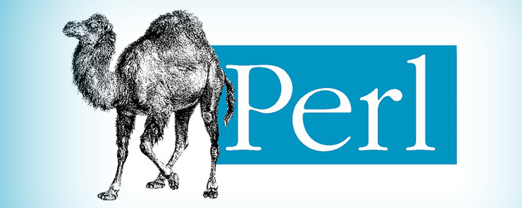 Perl (6) - Decision Making