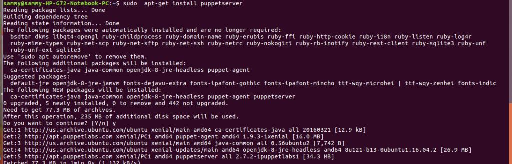 install puppet server