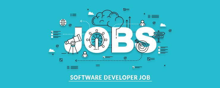 Software Developer Job