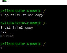 cp-file1-file2