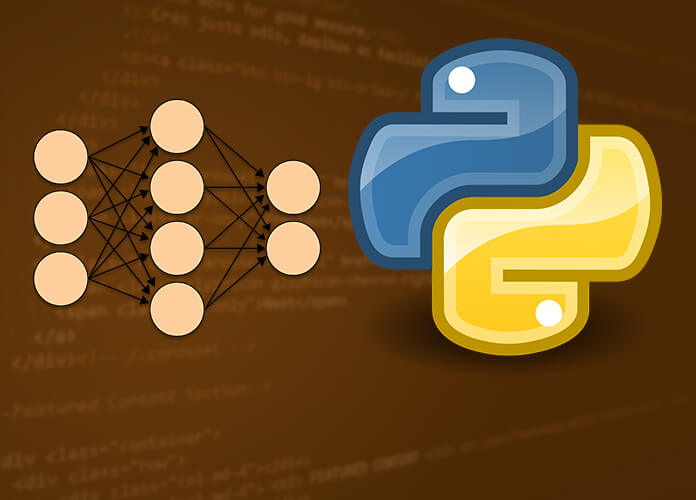 Learn How To Program A Neural Network in Python From Scratch