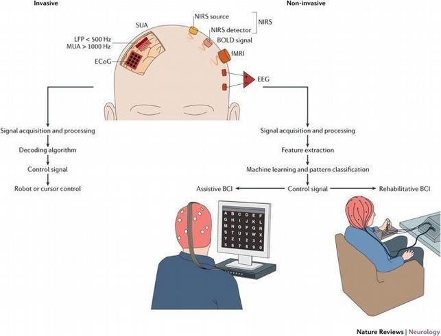 Brain computer wiring AI deep neural