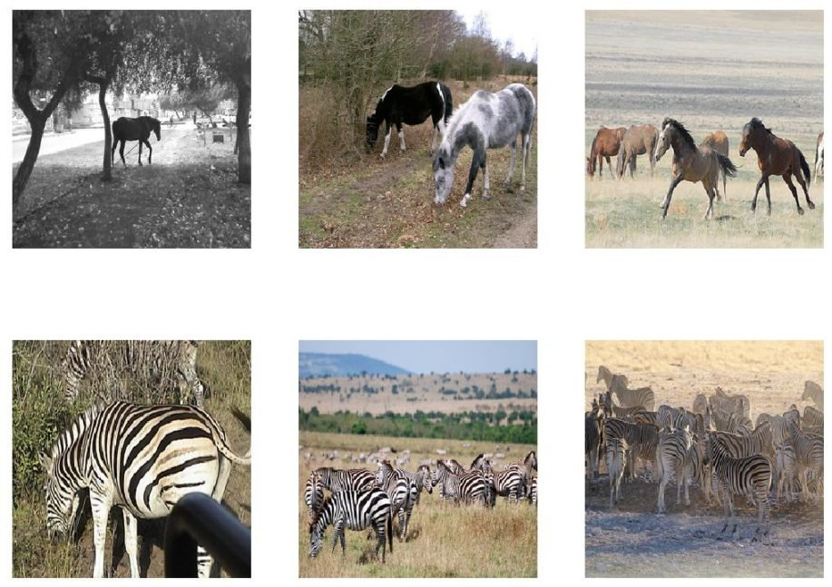 Figure 4. Plot of images from the Horses2Zeba Dataset